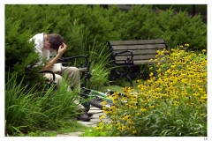 7-27-01 - A student is shown in deep thought as he studies on a bench in front of Benson with his bike next to a flower garden of black eyed susans. (Vanderbilt Photo/Neil Brake)FlowersStudyStudentSoloSerious